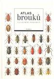 Atlas brouků - obálka