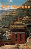 Pět Tibeťanů (Staré tajemství himálajských údolí působí zázraky) - obálka