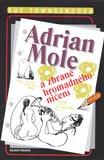 Adrian Mole a zbraně hromadného ničení - obálka