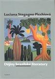 Dějiny brazilské literatury - obálka