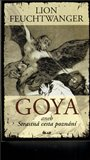 Goya aneb Strastná cesta poznání - obálka