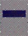 Obálka knihy Svět optických iluzí