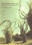 Pod cizím nebem bloudili jsme spolu (Rozpravy s básníky devadesátých let) - obálka