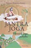 Jantrajóga (Tibetská jóga pohybu) - obálka