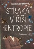 Straka v &#237;i entropie - oblka