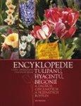 Encyklopedie tulipánů, hyacintů, begonií (a dalších okrasných cibulnatých a hlíznatých rostlin) - obálka