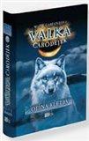 Odina kletba (Válka čarodějek) - obálka