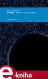 Pulchra (Příběh o krásné planetě) - obálka