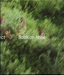 Book on Ahae. So Simple, so Beautiful, so Perfect - Milan Knížák