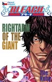 Bleach 5: Rightarm of the Giant - oblka