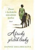 Africký příběh lásky - obálka