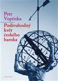 Podivuhodný květ českého baroka (První přednášky o teorii množin) - obálka