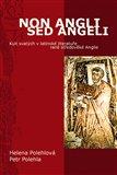 Non Angli sed Angeli (Kult svatých v latinské literatuře raně středověké Anglie) - obálka