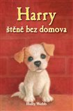 Harry, tn bez domova - oblka
