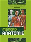 Memorix anatomie