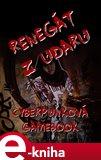 Renegát z Udaru (Cyberpunková gamebook) - obálka