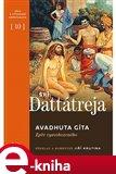 Avadhuta Gíta (Zpěv vysvobozeného) - obálka