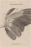 Zastřihávání křídel - obálka