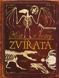 Kosti a kostry: Zvířata