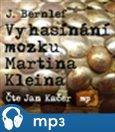 Vyhasínání mozku Martina Kleina - obálka
