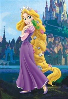 Puzzle Princezna na vlásku 24 dílků