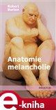 Anatomie melancholie - obálka