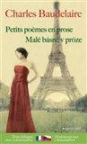 Malé básně v próze / Petits poémes en prose - obálka