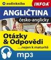 Angličtina - otázky a odpovědi nejen k maturitě (česko-anglicky)