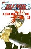 A Star and a Stray Dog - obálka
