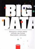 Big Data (Revoluce, která změní způsob, jak žijeme, pracujeme a myslíme) - obálka