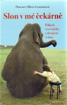 Obálka titulu Slon v mé čekárně