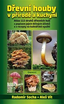 Obálka titulu Dřevní houby v přírodě a kuchyni