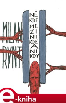 Někde mezi nikde a nikdy - Milan Rynt e-kniha