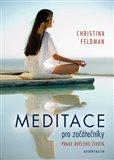 Meditace pro začátečníky (Praxe bdělého života) - obálka