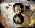 Kalendář Daniel Reynek 2015 - stolní - obálka