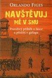 Navštěvuj mě v snu (Pravdivý příběh o lásce a přežití v gulagu) - obálka