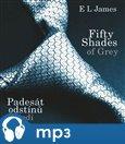 Fifty Shades of Grey: Padesát odstínů šedi - obálka