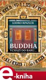 Buddha vchází do baru (Průvodce životem pro novou generaci) - obálka