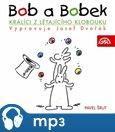 Bob a Bobek - Králíci z létajícího klobouku - obálka