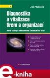Diagnostika a vitalizace firem a organizací - obálka