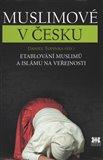 Muslimové v Česku (Etablování muslimů a islámu na veřejnosti) - obálka