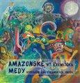 Amazonské Medy (Vyprávění amerykánských Yndův) - obálka