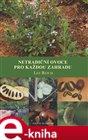 Netradiční ovoce pro každou zahradu