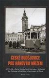 České Budějovice pod hákovým křížem - obálka