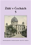 Židé v Čechách 5 (Sborník příspěvků ze semináře konaného v říjnu 2014 v Teplicích) - obálka