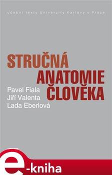 Stručná anatomie člověka - Pavel Fiala, Lada Eberlová, Pavel Valenta e-kniha