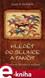 Hledět do slunce a tančit (Moudrost lakotských indiánů) - obálka