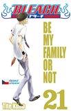 Bleach 21-Be My Family or Not - obálka