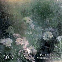 Kalendář Daniel a Bohuslav Reynkovi 2017 - Daniel Reynek, Bohuslav Reynek