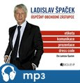 Ladislav Špaček – Úspěšný obchodní zástupce - obálka
